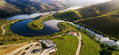 Vila Galé Douro Collection