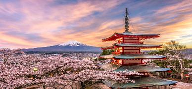 Japão: Circuito Banzai